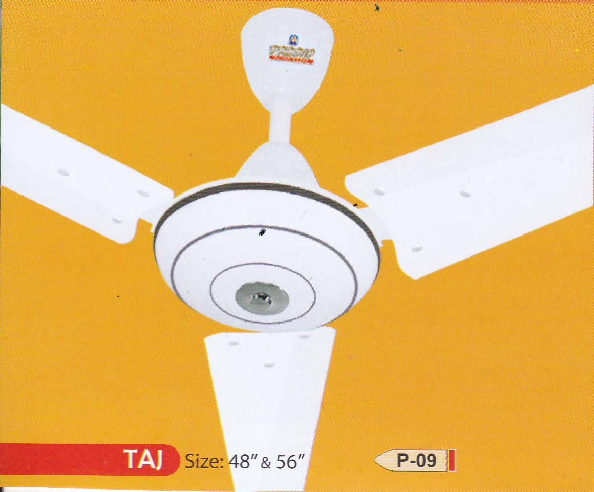 TAJ Image